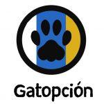 Gatopción Logo